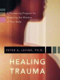 bokomslag Healing Trauma