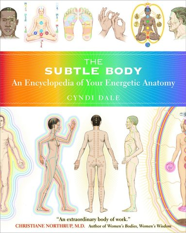 bokomslag Subtle Body