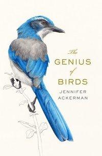 bokomslag The Genius of Birds