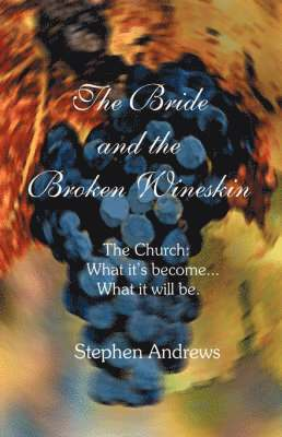 bokomslag The Bride and the Broken Wineskin