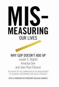bokomslag Mis-measuring Our Lives
