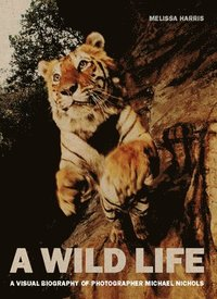 bokomslag Wild life: a visual biography of photographer nick nichols - a visual biogr