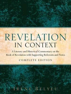 bokomslag Revelation In Context