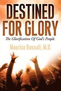 bokomslag Destined For Glory