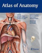 bokomslag Atlas of Anatomy