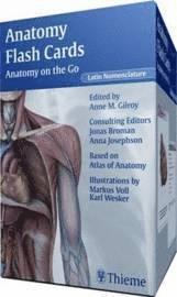 bokomslag Anatomy Flash Cards (Latin Nomenclature Version)
