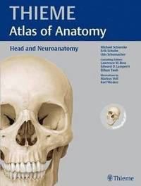 bokomslag Head and Neuroanatomy (THIEME Atlas of Anatomy)