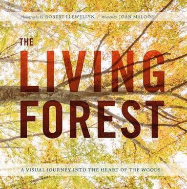 bokomslag Living forest - a journey into natures most intricate habitat