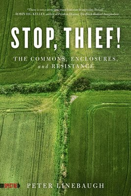 bokomslag Stop, Thief!: The Commons, Enclosures, And Resistance