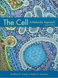 bokomslag The Cell: A Molecular Approach