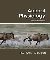 bokomslag Animal Physiology