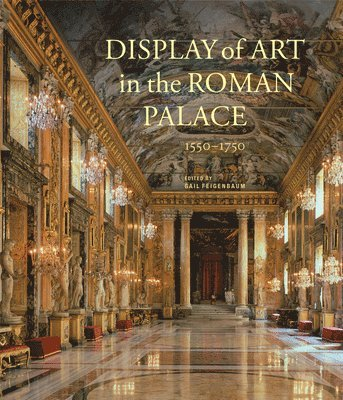 bokomslag Display of Art in Roman Palace, 1550-1750