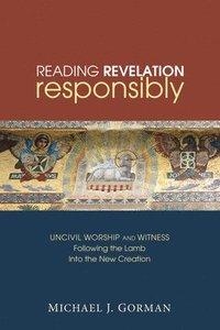 bokomslag Reading Revelation Responsibly