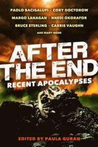 bokomslag After the End: Recent Apocalypses