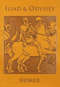 bokomslag Iliad &; Odyssey