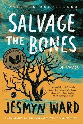 bokomslag Salvage the Bones