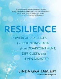 bokomslag Resilience