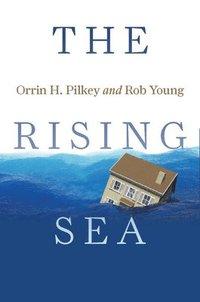 bokomslag The Rising Sea