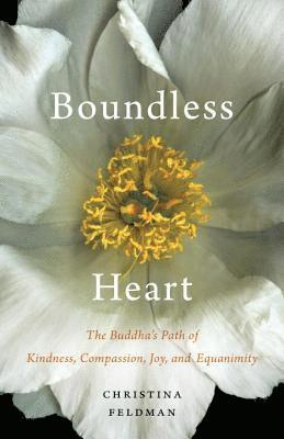 bokomslag Boundless heart