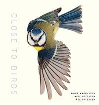 bokomslag Close to Birds