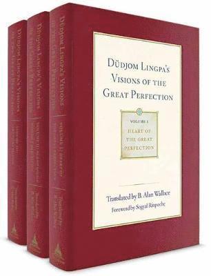 bokomslag Dudjom lingpas visions of the great perfection