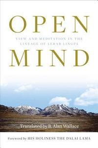 bokomslag Open Mind