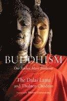 bokomslag Buddhism