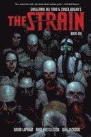 bokomslag The Strain Book 1