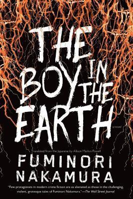 bokomslag Boy In The Earth