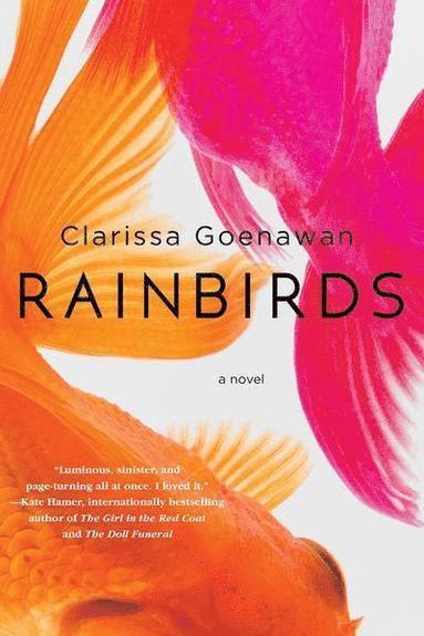 bokomslag Rainbirds