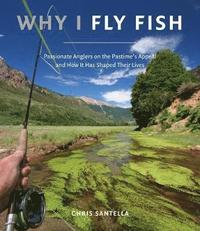 bokomslag Why I Fly Fish:Passionate Anglers on the Pastime's Appeal and How