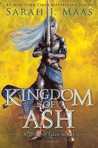 bokomslag Kingdom of Ash