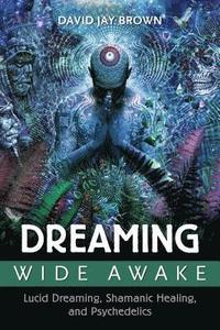 bokomslag Dreaming Wide Awake