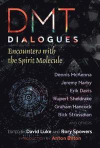 bokomslag DMT Dialogues