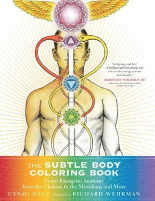 bokomslag Subtle body coloring book - learn energetic anatomy--from the chakras to th