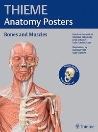 bokomslag THIEME Anatomy Posters Bones and Muscles, Latin Nomeclature