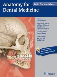 bokomslag Anatomy for Dental Medicine, Latin Nomenclature