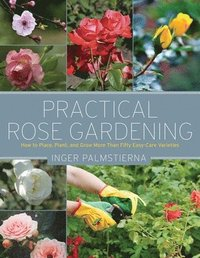 bokomslag Practical Rose Gardening