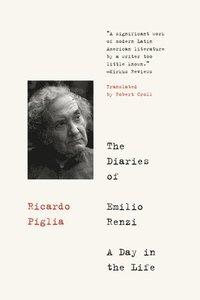 bokomslag The Diaries of Emilio Renzi