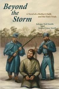 bokomslag Beyond the Storm