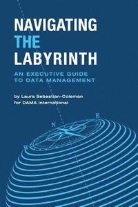 bokomslag Navigating the Labyrinth