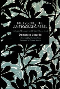 bokomslag Nietzsche, the Aristocratic Rebel