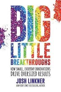 bokomslag Big Little Breakthroughs