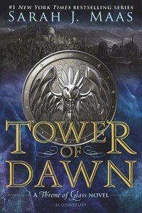 bokomslag Tower Of Dawn