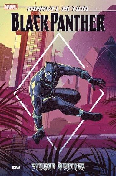 bokomslag Marvel Action: Black Panther: Stormy Weather (Book One)