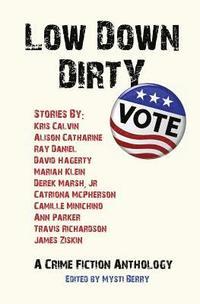 bokomslag Low Down Dirty Vote