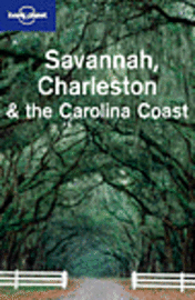 bokomslag Savannah, Charlestone & the Carolina coast LP