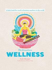 bokomslag Destination Wellness