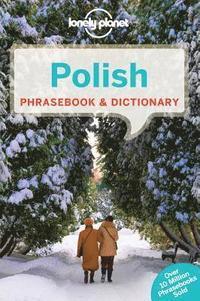 bokomslag Polish Phrasebook & Dictionary