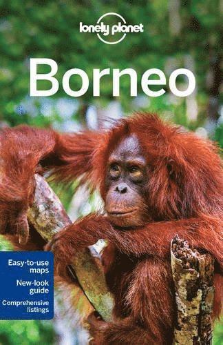 bokomslag Borneo